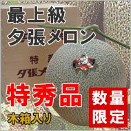 夕張メロン【特秀品 木箱入り 1.6kg×1玉入り 10,000円】